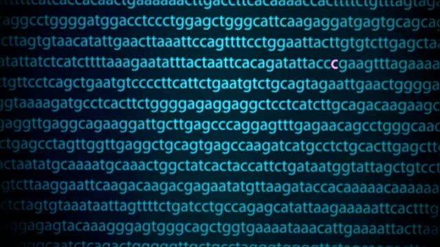 Gene analysis may help with undiagnosed illnesses Cambridge Wellcome Sanger Institute INT Close Shots of computer screen showing gene codes of...