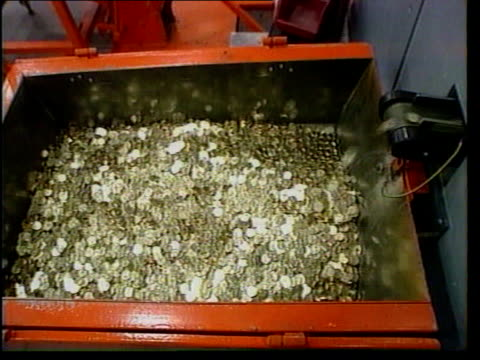 stockvideo's en b-roll-footage met alternative politics lib container filling with 10 euro cent coins from conveyor cms 10 euro cent coins along on conveyor cs 10 euro cent coins... - amerikaanse munt