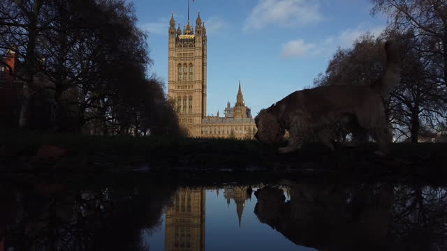 general city views in area of houses of parliament and westminster bridge, in time of brexit, in london, england,u.k., on monday, december 14, 2020.... - waterfront stock videos & royalty-free footage