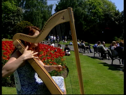 northern ireland woman playing harp in park sot - harp stock videos & royalty-free footage