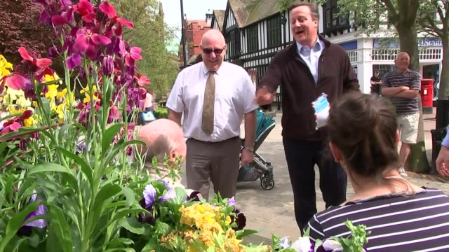 general election 2017: david cameron in nantwich; david cameron canvassing for votes on street with local conservative candidate sot - nantwich stock-videos und b-roll-filmmaterial