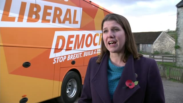 general election 2019: liberal democrats, green party and plaid cymru form remain alliance; england: somerset: ext jo swinson interview sot. - タータンチェック点の映像素材/bロール