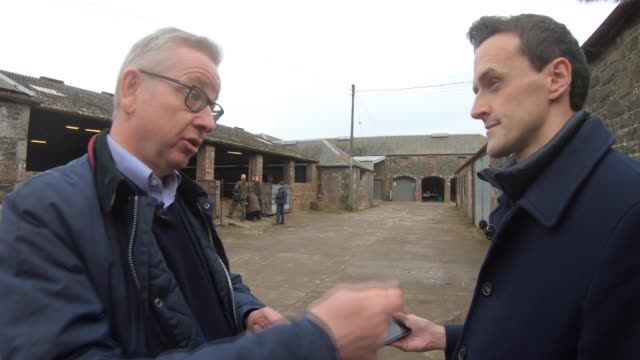 general election 2019: michael gove visits farm in scottish borders; scotland: ext michael gove interview sot. - people will know exactly what you're... - agriculture stock videos & royalty-free footage