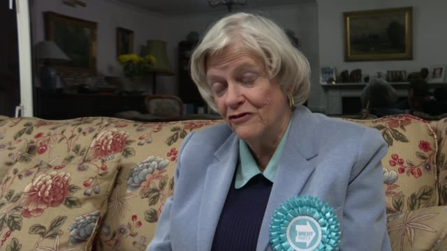 nigel farage claims number 10 insiders 'offered inducements' to get brexit party candidates to stand aside england int ann widdecombe mep interview... - nigel farage stock videos & royalty-free footage