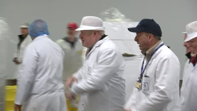 general election 2019: round-up of day's campaigning; uk: prime minister boris johnson visits grimsby fish market during general election campaign.... - fish stock videos & royalty-free footage