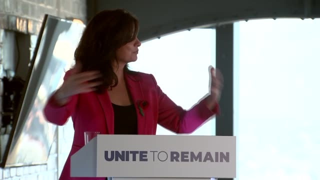 unite to remain press conference england london int various of unite to remain press conference presentation chaired by heidi allen with molly scott... - heidi allen stock videos & royalty-free footage