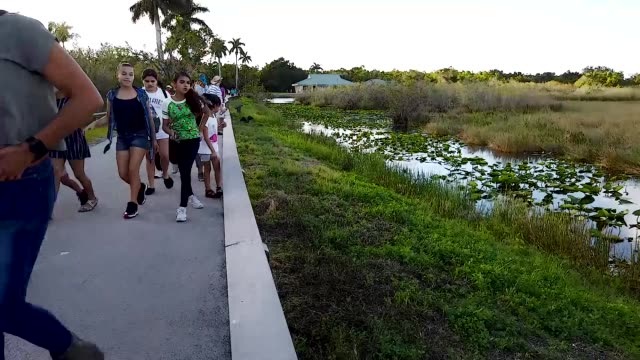General footage of the Everglades National Park during the 12th day of a partial government shutdown on January 02 2019 in Everglades National Park...