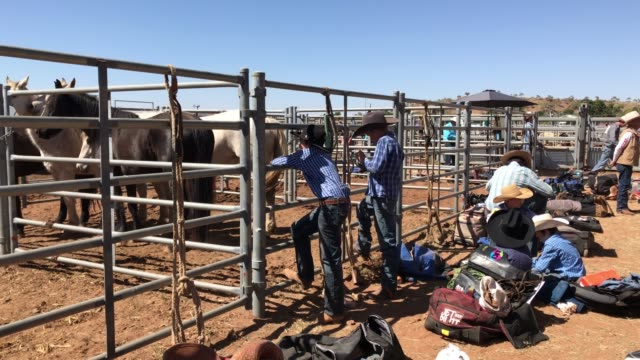 general view is seen as competitors prepare in the yard behind the chutes during the 2018 mount isa rotary rodeo at the buchanan park events complex... - southern hemisphere stock videos & royalty-free footage