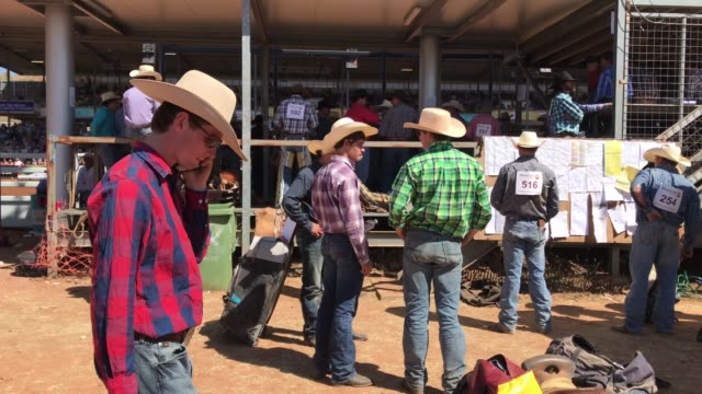 general view is seen as competitors prepare while others check the run sheet and results board in the yard behind the chutes during the 2018 mount... - southern hemisphere stock videos & royalty-free footage