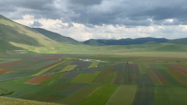 general view of fields of blooming lentil and poppies flowers during the annual blossom, on july 3, 2020 in castelluccio di norcia, italy.... - territorio video stock e b–roll