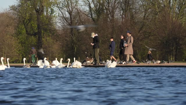 march 25: general view of hyde park on day 2 of 'stay at home' as social distancing takes shape on society during the coronavirus pandemic. british... - public park stock videos & royalty-free footage