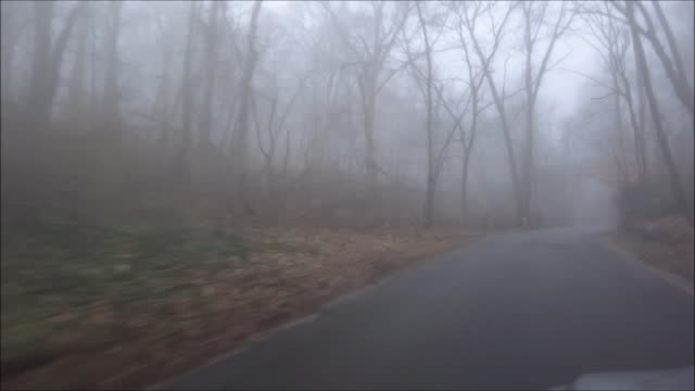 general view of sweet hollow road engulfing in fog on december 12 in melville, new york. temperatures higher than seasonal averages on long island... - fog stock videos & royalty-free footage