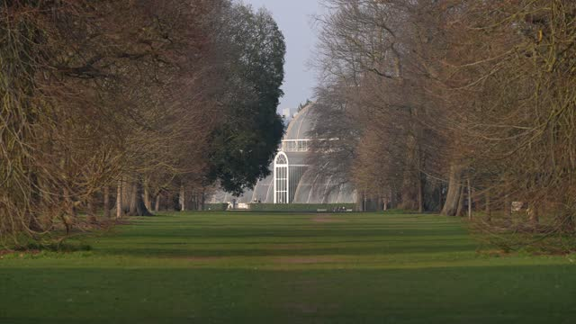 general view of the palm house at kew gardens on march 2, 2021 in london, england. - formal garden stock videos & royalty-free footage