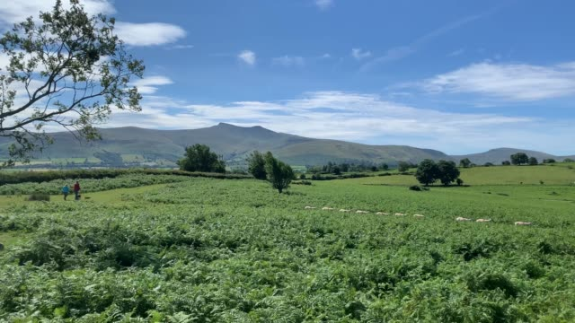 general view of the the moorland in the brecon beacons, with walkers enjoying the scenery of pen y fan mountain on july 22, 2020 in blackwood, wales,... - 中央ウェールズ点の映像素材/bロール