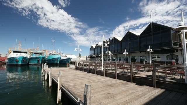 general views of a deserted kailis fishing boat harbour are seen on march 26, 2020 in fremantle, australia. further restrictions on travel and... - tattoo stock videos & royalty-free footage