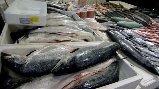 general views of billingsgate fish market england london billingsgate int fishmonger showing wholesale customer boxes of fish on his stall sot/... - dogfish stock videos & royalty-free footage