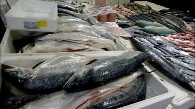 stockvideo's en b-roll-footage met general views of billingsgate fish market england london billingsgate int fishmonger showing wholesale customer boxes of fish on his stall sot/... - doornhaai