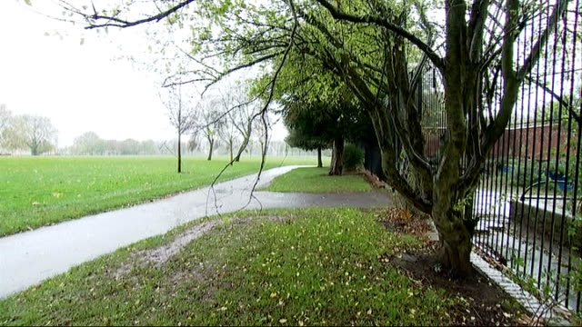 stockvideo's en b-roll-footage met general views of bristol general views of swings in children's playground as rain falls / leaves on ground / bare trees in park / bare tree branches... - bare tree