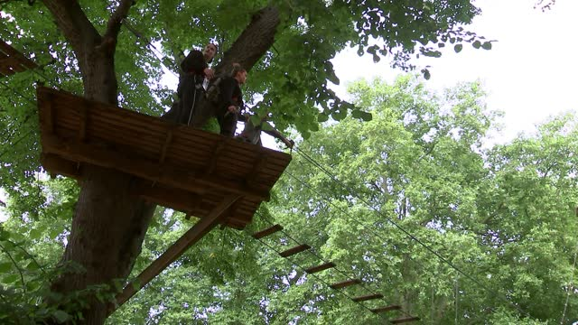 general views of go ape adventure park; england: london: ext various of people along high ropes course at go ape adventure park - adventure stock videos & royalty-free footage