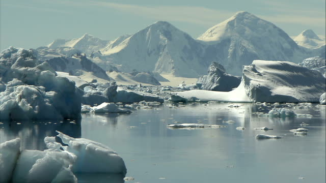 ice floes / crevasse / mountains excellent steady shots of quiet peaceful bay and ice chunks in the sunshine **good shots** / tracking shots of birds... - crevasse stock videos & royalty-free footage
