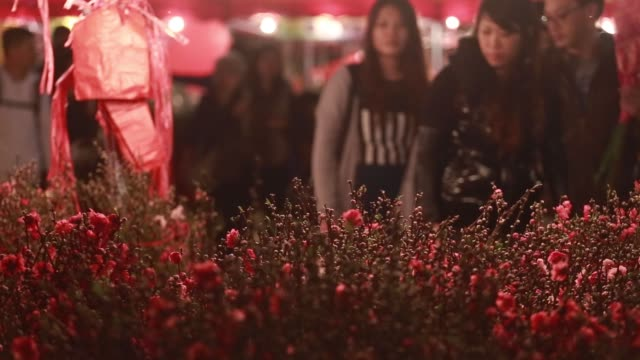 general views of shoppers browsing flowers at a flower market at night in the mong kok district of hong kong china on sunday feb 15 2015 - mong kok stock videos and b-roll footage