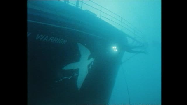 General views of the sunken wreckage of the Greenpeace vessel Rainbow Warrior