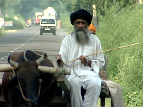 General Views Old men in turbans and dressed in white along road on wooden cart pulled by oxen / motorised lorry along road / oxen or cattle in field...