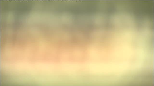 general views st james' park stadium england newcastleupontyne st james' park ext general views st james' park stadium with sports direct sign above... - st. james' park newcastle upon tyne stock videos & royalty-free footage