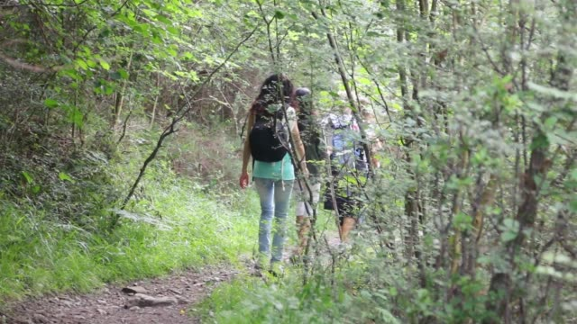 3 generation family hiking together. - parque natural stock videos and b-roll footage