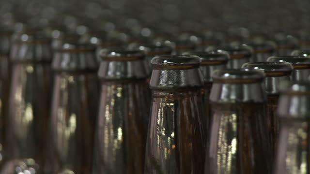 generic beer bottling production - dogfish stock videos & royalty-free footage