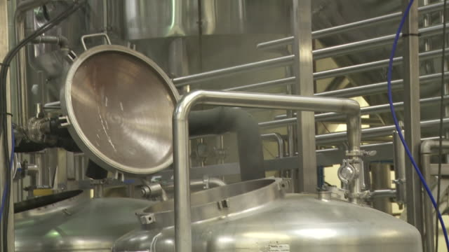 generic brewing process of beer - dogfish stock videos & royalty-free footage