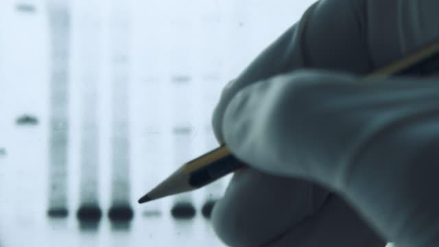 dna-ergebnisse zur dna-genanalyse zum covid-19-pandemievirus - analysing stock-videos und b-roll-filmmaterial