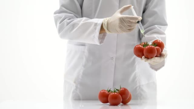 genetic modification - living organism stock videos & royalty-free footage