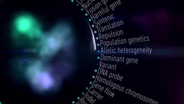 vídeos de stock e filmes b-roll de genetic terms - modificação genética