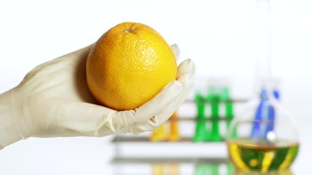 HD DOLLY: Genetisch veränderte Nahrungsmittel