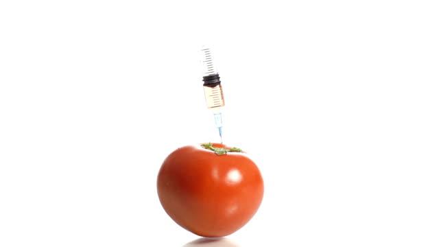 HD-ZEITLUPE: Genetisch veränderte Tomaten