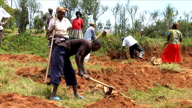twentieth anniversary akabakobwa ext various of villagers using axes and machetes to dig up graves of rwandan genocide victims - völkermord stock-videos und b-roll-filmmaterial