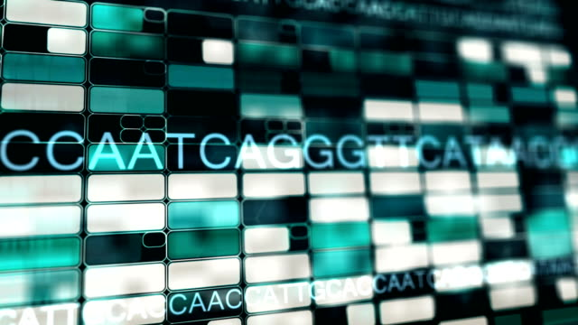 genome dna sequence in perspective 3d view - chromosome stock videos and b-roll footage