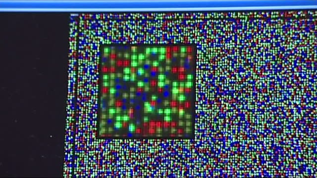 genomic information on a laboratory screen - dna stock videos & royalty-free footage