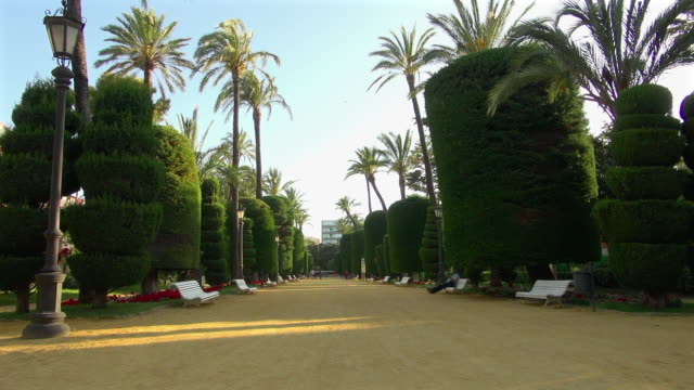 Genoves Park of Spain with Uniquely Trimmed Trees