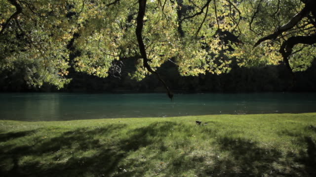 gentle autumn river - flowing water stock videos & royalty-free footage