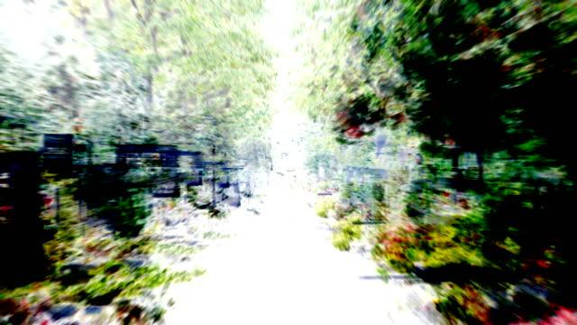 中央墓地: 穏やかな強調 - 墓参り (ループ) - 記念碑点の映像素材/bロール