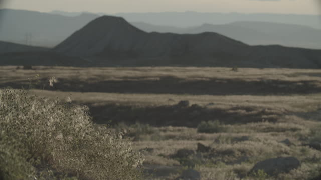 a gentle wind blows high desert grasses outdoors on a sunny day with mountains in the background in western colorado - swaying stock videos & royalty-free footage