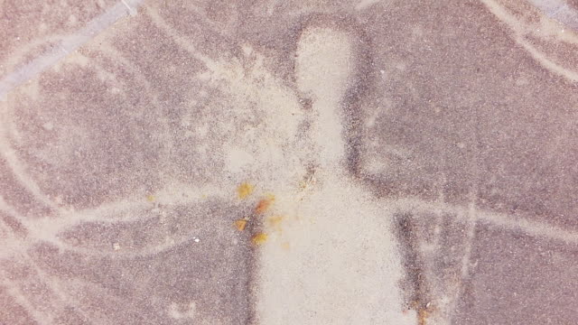 MS AERIAL Geoglyph image of a human being