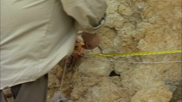 a geologist measures the rock wall of albion island quarry with a measuring tape. - geologist stock videos & royalty-free footage