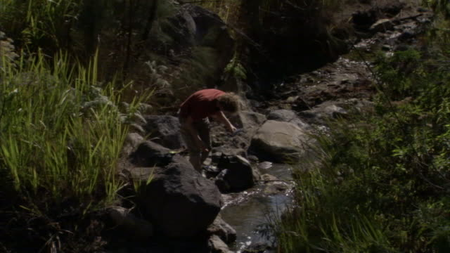 a geologist takes water samples from a stream littered with volcanic rocks. - geologist stock videos & royalty-free footage