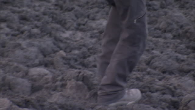 a geologist walks across a lava field. - geologist stock videos & royalty-free footage