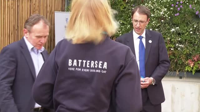 george eustice visits battersea dogs and cats home; england: london: battersea dogs and cats home: ext george eustice mp and peter laurie along... - stroking stock videos & royalty-free footage