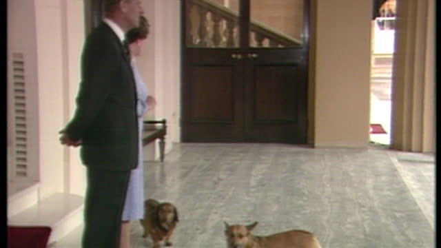 george h w bush and barbara bush leave buckingham palace waved off be queen and prince philip, royals then re-enter palace with corgi dogs 01061989 - königin stock-videos und b-roll-filmmaterial
