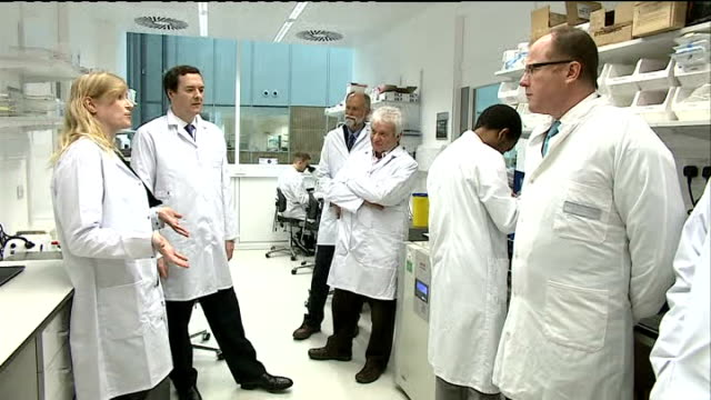 vídeos de stock e filmes b-roll de george osborne tours science lab in cambridge; england: cambridgeshire: cambridge: int general views of sicence lab / lab technicians working in lab... - vista geral